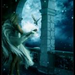 .: Night Angel :.
