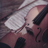 My old violin
